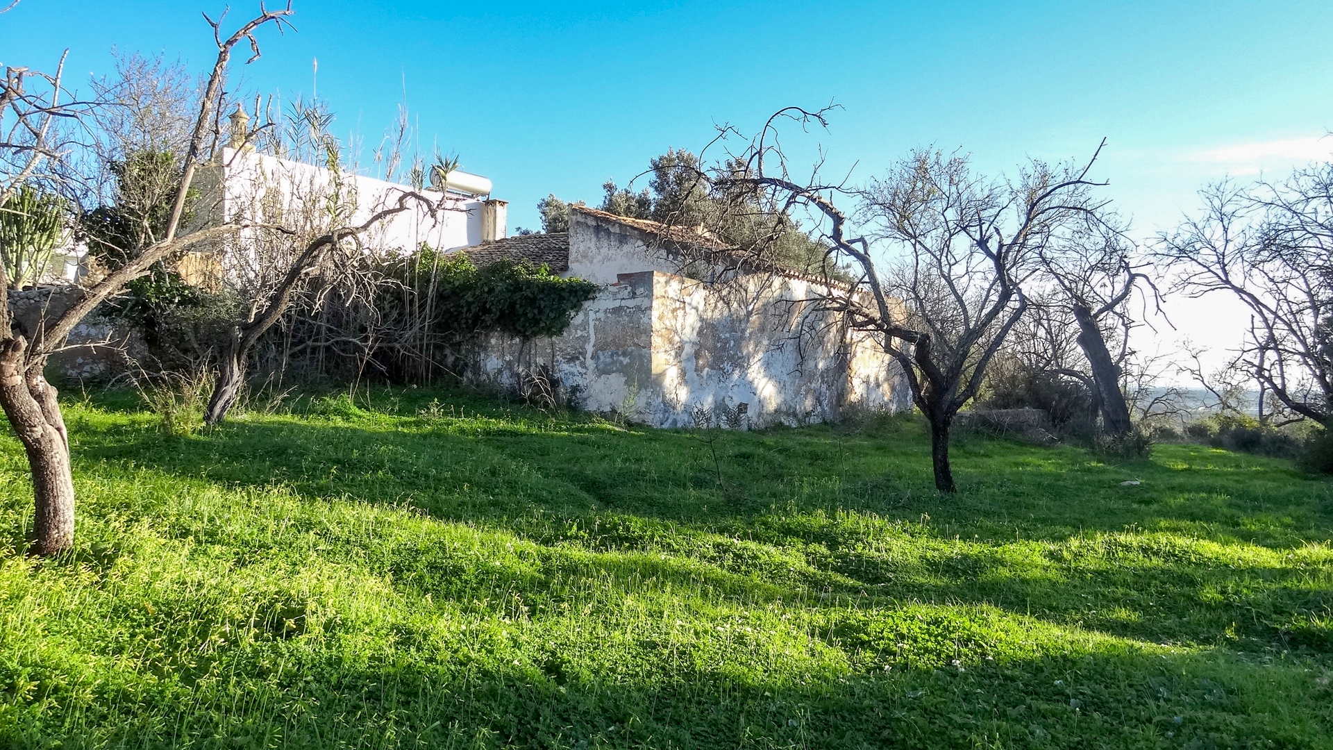 Plot in an elevated location with stunning Sea Views, Santa Bárbara de Nexe | VM1359 Exceptional plot with amazing sea views and construction allowance for 3 floors building in Santa Bárbara de Nexe