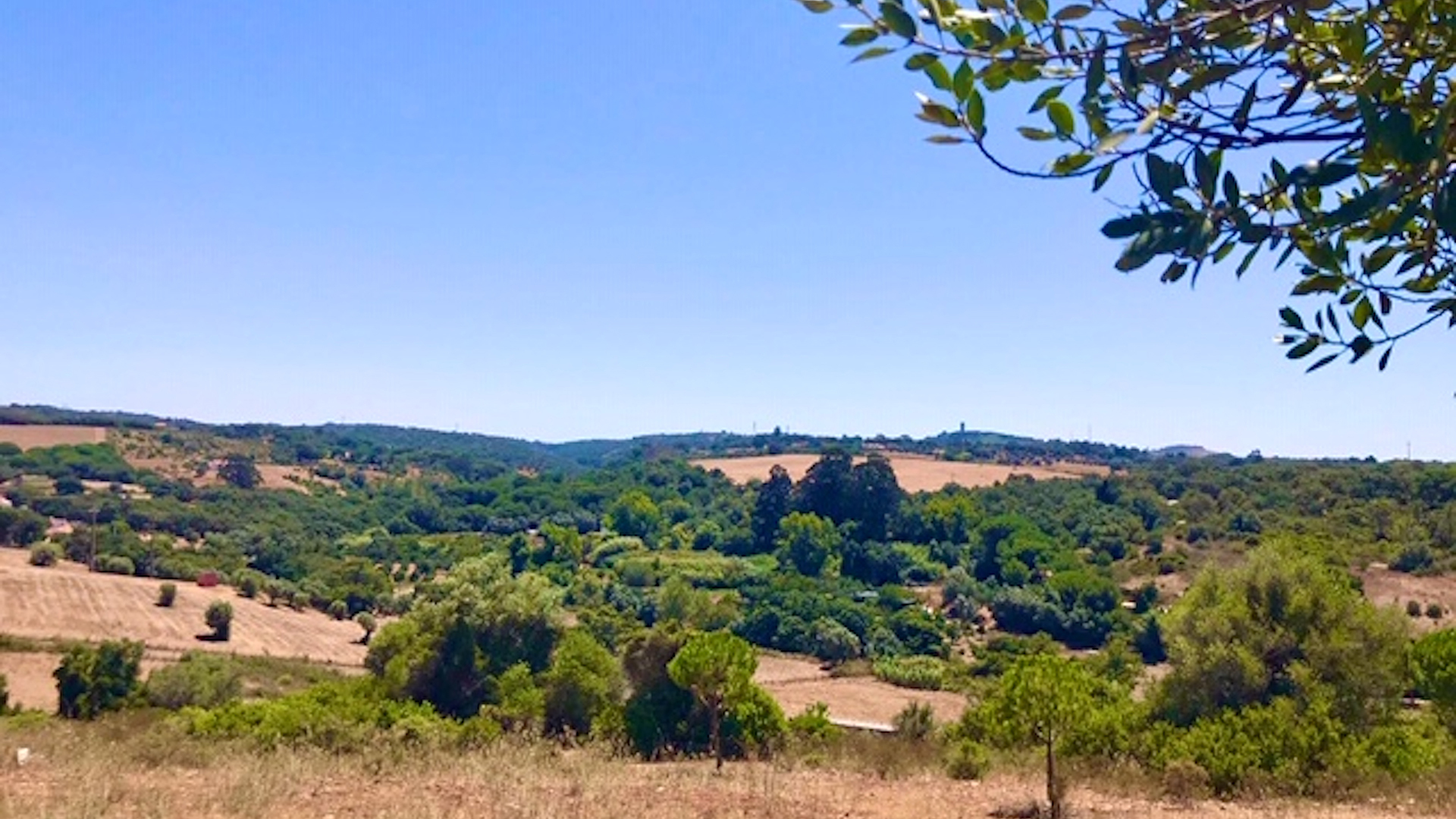 Beautiful plot of land with approved plan for 4 Star boutique hotel, Costa Vicentina, Alentejo | LG1698
