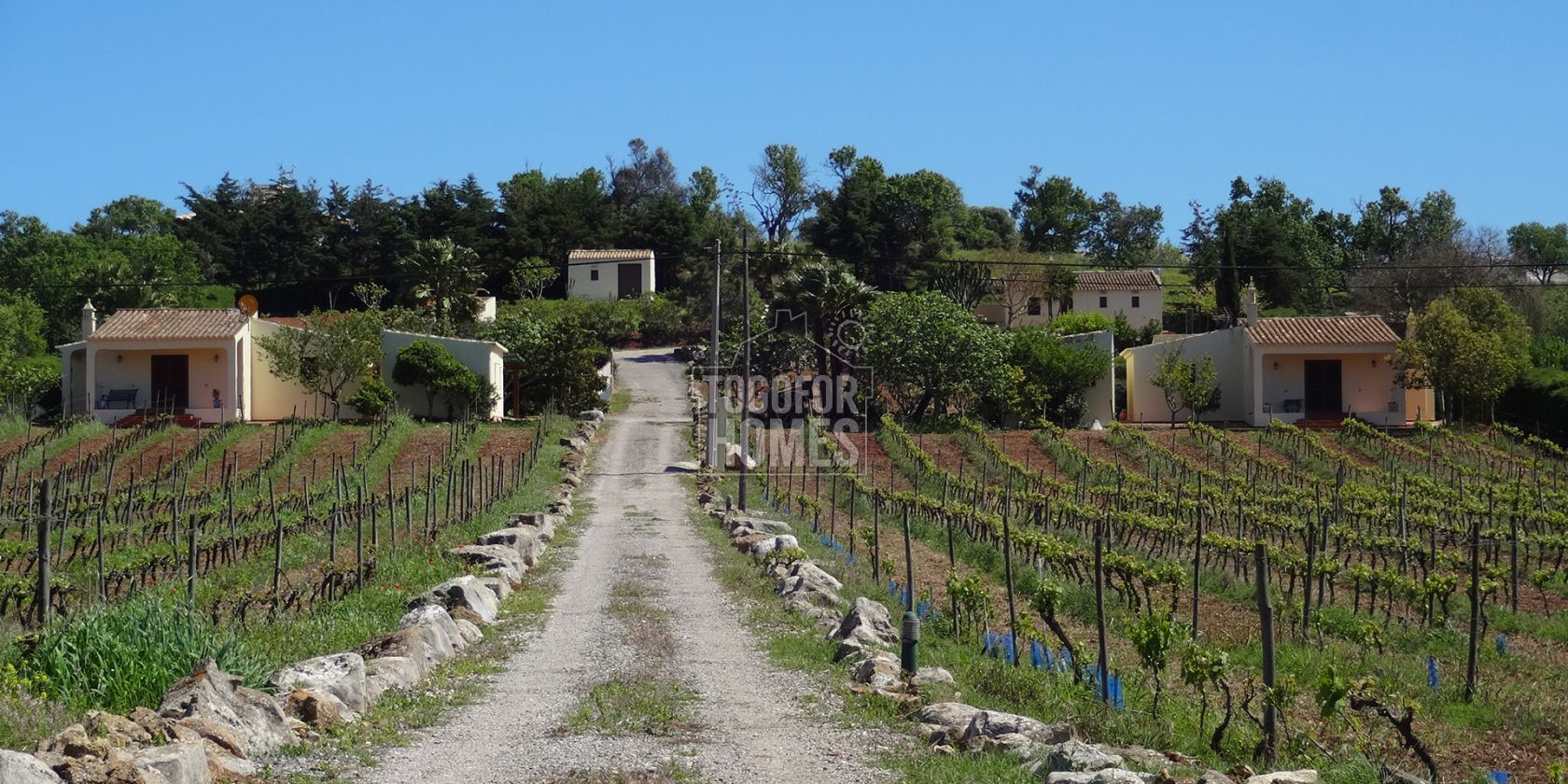 LG1100 -3 cottages with rental license, pool, land and commercial vineyard, near Espiche, West Algarve